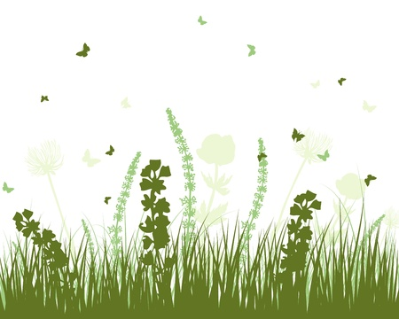 grassland: Summer meadow background illustration with transparency and meshes