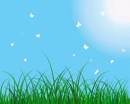 Summer meadow background. EPS 10 vector illustration without transparency. Vector