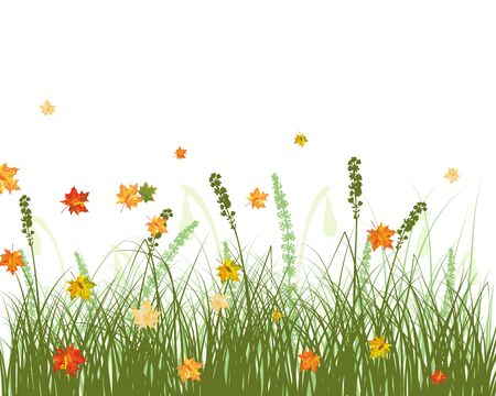 Meadow background with maple leaves. All objects are separated. Stock Vector - 22775138