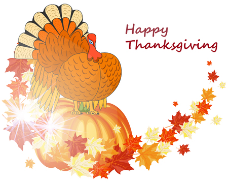 turkey feather: Thanksgiving Day background with maple leaves. All objects are separated. Vector illustration with transparency.  Illustration