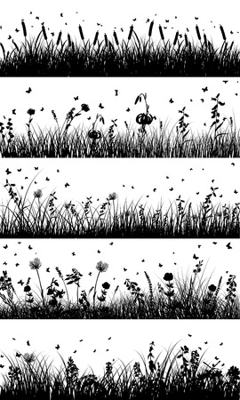 grass illustration: Summer meadow background