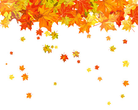 leaves frame: Autumn maple leaves background. Vector illustration without transparency EPS10.