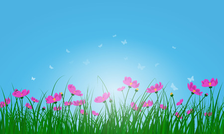 pink butterfly: Meadow color background with butterflies and sun Illustration