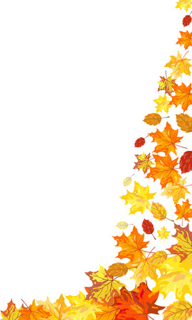 Autumn maple leaves background. Vector illustration without transparency. EPS10.