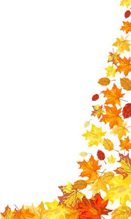 Herfst esdoorn bladeren achtergrond. Vector illustratie zonder transparantie. EPS10.