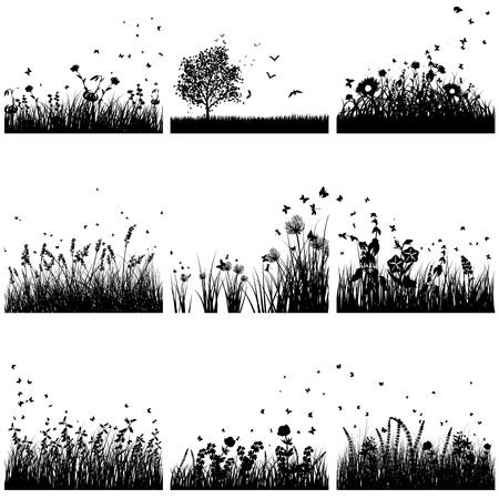 butterflies flying: Vector grass silhouette set. All objects are separated. Illustration