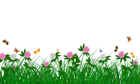 Meadow color background with butterflies and cornflowers. All objects are separated. Vector illustration. Eps 10 without transparency. Vector