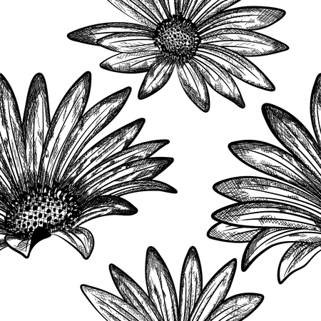 pattern vintage: Doodle floral seamless vector pattern.  For easy making seamless pattern just drag all group into swatches bar, and use it for filling any contours.