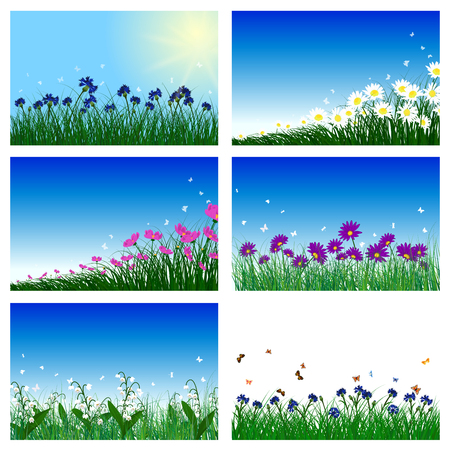 Meadow color background set with sun. All objects are separated. Vector illustration with transparency  and mesh. Eps 10. Illustration