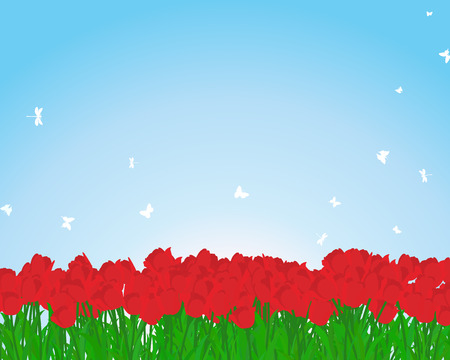 landscaped garden: Summer meadow background with tulips.  vector illustration. Illustration