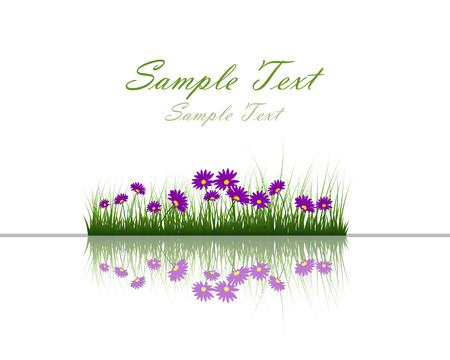 flower fields: Flower with grass on water surface with reflection.  vector illustration with transparency. Illustration