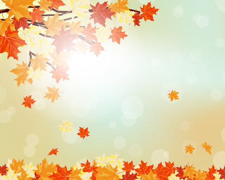 fall leaves border: Autumn maple leaves background. Vector illustration with transparency and mesh.