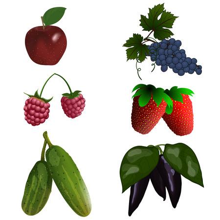 pepino caricatura: Conjunto de color de frutas y verduras. ilustraci�n vectorial con transparencia.