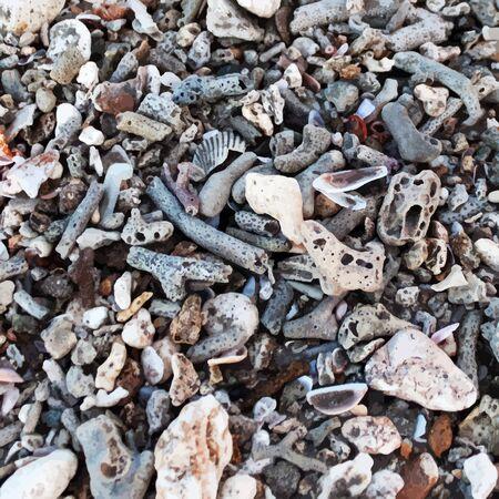 dappled: Sea shore texture.