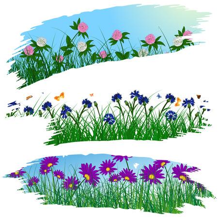 brushstroke: Set of three brushstroke frames with flower meadow background.