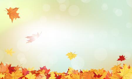 estaciones del año: Marco del otoño con las hojas que caen de arce en el fondo del cielo Vectores