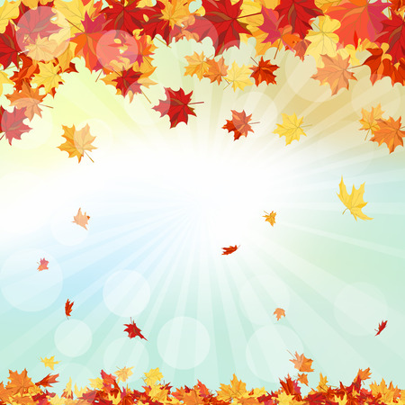 Autumn  Frame With Falling  Maple Leaves on Sky Background 일러스트