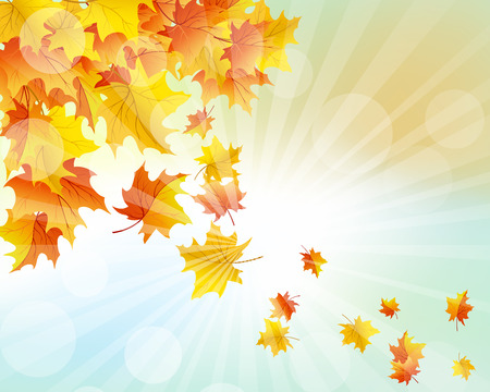 fall leaves: Autumn  Frame With Falling  Maple Leaves on Sky Background Illustration