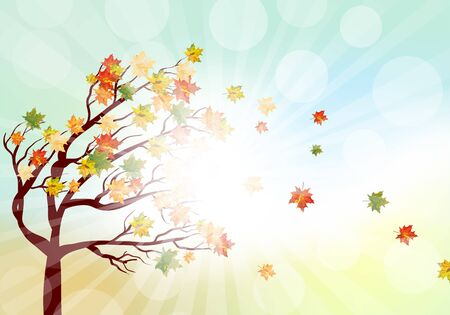 beauty of nature: Autumn  Frame With Falling  Maple Leaves on Sky Background. Elegant Design with Rays of Sun and Ideal Balanced Colors. Vector Illustration. Illustration
