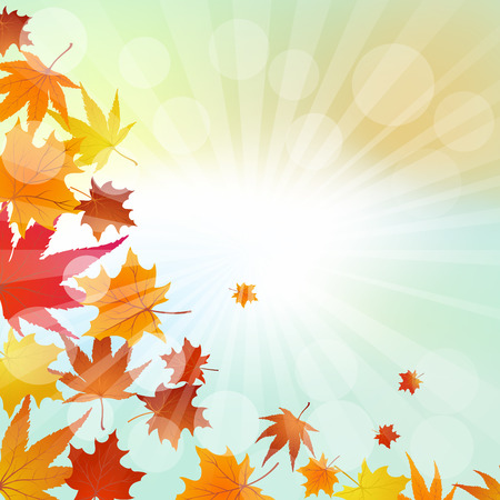autumn leaves falling: Autumn  Frame With Falling  Maple Leaves on Sky Background. Elegant Design with Rays of Sun and Ideal Balanced Colors. Vector Illustration. Illustration
