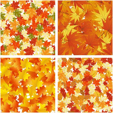 fall leaves: Seamless Autumn Leaves Pattern Set Illustration