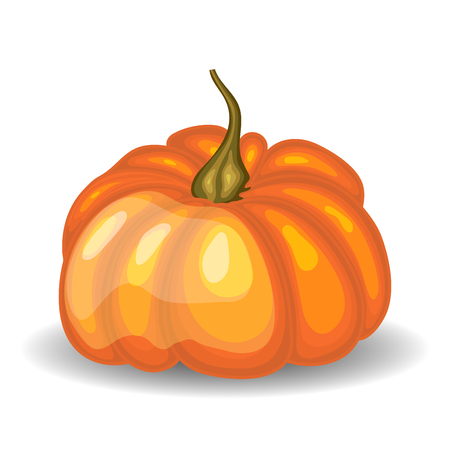 fall harvest: Beautiful Glossy Orange Pumpkin over White Background. Cute Icon  Suitable For Creating Fall,  Food, Thanksgiving Day, Harvest Day Designs. Vector Illustration.