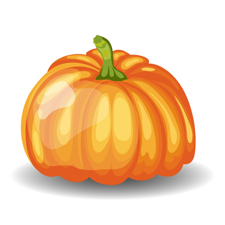 reaping: Beautiful Glossy Orange Pumpkin over White Background. Cute Icon  Suitable For Creating Fall,  Food, Thanksgiving Day, Harvest Day Designs. Vector Illustration.