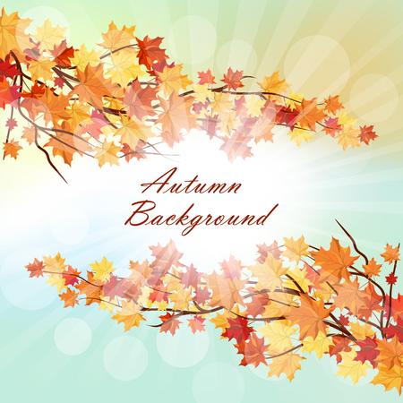 空を背景に秋のフレームと立ち下がりのメープルを残します。太陽と理想的な光線、エレガントなデザインは、色をバランス。ベクトルの図。