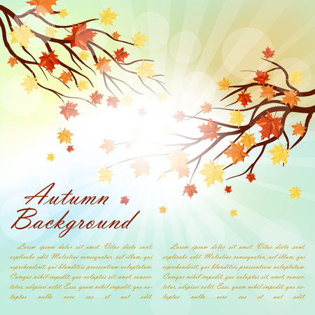 branches and leaves: Autumn  Frame With Falling  Maple Leaves on Sky Background. Elegant Design with Rays of Sun and Ideal Balanced Colors. Vector Illustration. Illustration