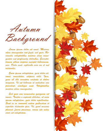 branches with leaves: Autumn  Frame With Maple and Oak Leaves and Berries Over White Background. Elegant Design with Text Space and Ideal Balanced Colors. Vector Illustration. Illustration