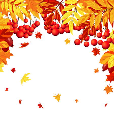 balanced: Autumn  Frame With Maple, Rowan and Dog Rose Leaves and Berries Over White Background. Elegant Design with Text Space and Ideal Balanced Colors. Vector Illustration.