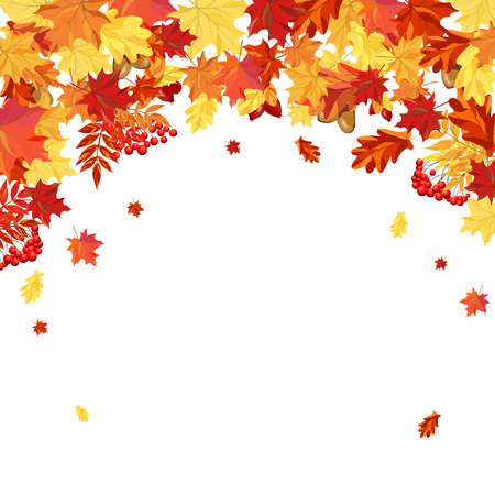 Autumn  Frame With Maple, Rowan, Oak and Dog Rose Leaves and Berries Over White Background. Elegant Design with Text Space and Ideal Balanced Colors. Vector Illustration.
