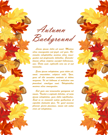 balanced: Autumn  Frame With Maple and Oak Leaves and Berries Over White Background. Elegant Design with Text Space and Ideal Balanced Colors. Vector Illustration. Illustration