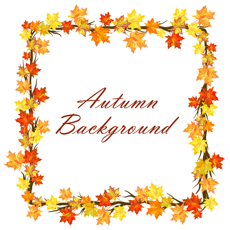 bright borders: Autumn  Frame With Maple Leaves on Branches of Tree  Over White Background. Elegant Design with Text Space and Ideal Balanced Colors. Vector Illustration.
