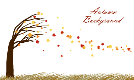 tilting: Autumn  design from tilting maple tree with blowing away leaves on white background. Elegant design with copy space and ideal balanced colors. Vector illustration.