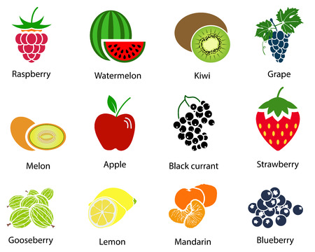 red grape: Set of cute fruit icons with title over white background. Vector illustration.