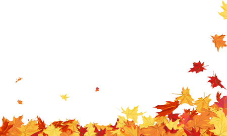 Autumn Frame With Blowing Maple Leaves Over White Background.