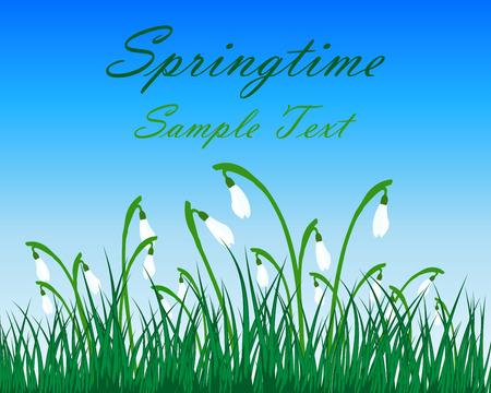Prato di primavera con il cielo blu. Illustrazione vettoriale.