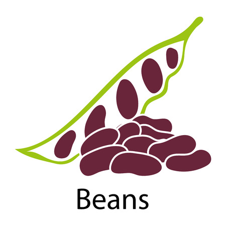 white beans: Beans icon on white background. Vector illustration.