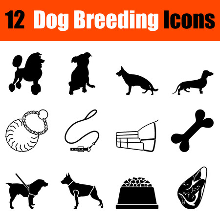 the trappings: Set of twelve dog breeding black icons. Vector illustration.