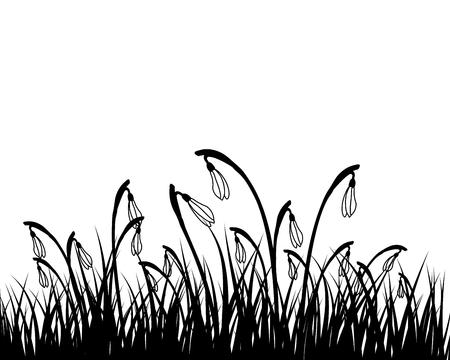 springtime: Springtime meadow with blue sky. Vector illustration. Illustration
