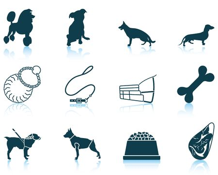 the trappings: Set of twelve dog breeding icons with reflections. Vector illustration. Illustration
