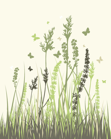 landscaped garden: Summer meadow background. Vector illustration without transparency and meshes. Illustration