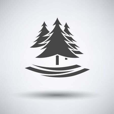 evergreen trees: Fir forest  icon on gray background with round shadow. Vector illustration.