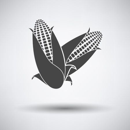 maize: Corn icon on gray background with round shadow. Vector illustration.