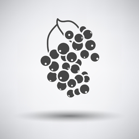 currants: Black currant icon on gray background with round shadow. Vector illustration. Illustration