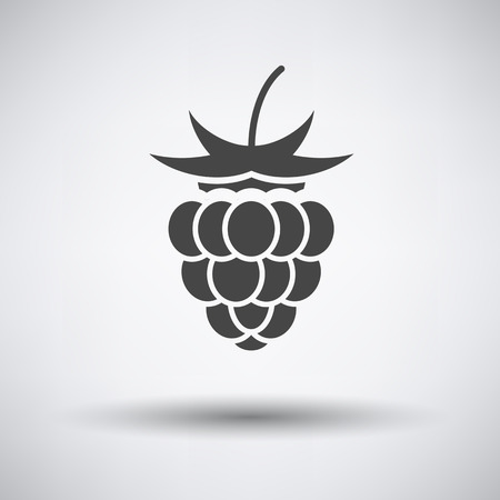 raspberry: Raspberry icon on gray background with round shadow. Vector illustration.