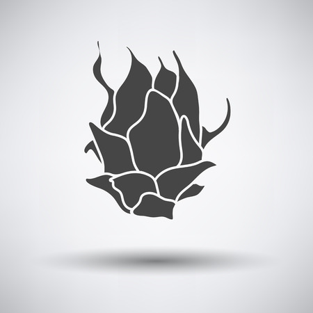 dragon fruit: Dragon fruit icon on gray background with round shadow. Vector illustration. Illustration