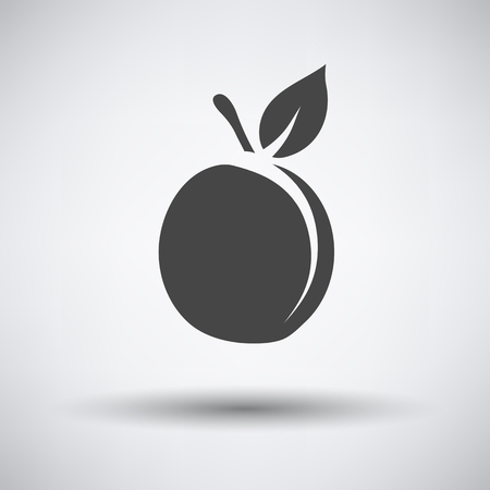 drupe: Peach icon on gray background with round shadow. Vector illustration. Illustration
