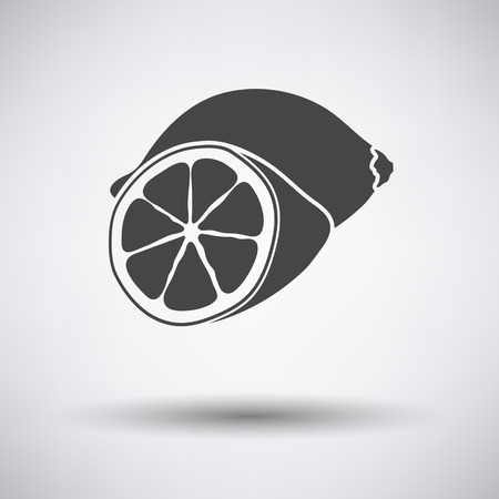 rind: Lemon icon on gray background with round shadow. Vector illustration.